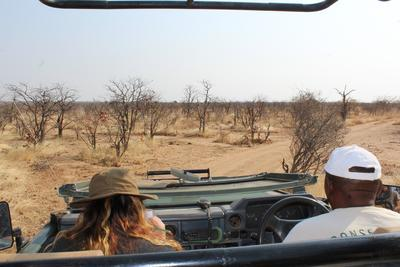 Sarah completing a wildlife census during a safari drive