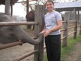 At elephant park