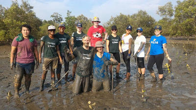 Volunteers after planting mangroves
