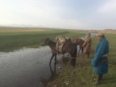 Nomad men tend to their horses in Mongolia