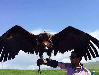 Volunteer with an eagle in Mongolia