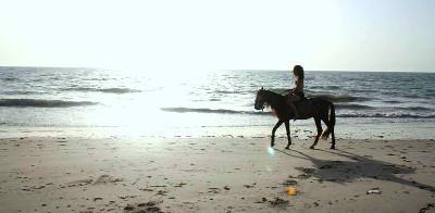 Horseback riding in Senegal