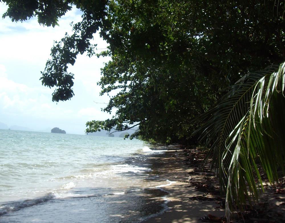 Volunteering marine project Thailand
