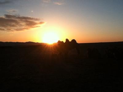 Volunteers in Mongolia