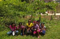 Care placement Jamaica