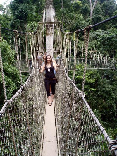 Kakum rainforest in Ghana