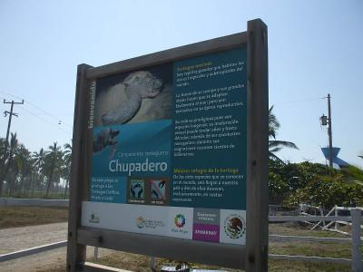 Turtle camp sign