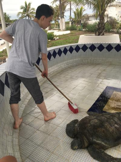 Cleaning turtle tanks in Mexico