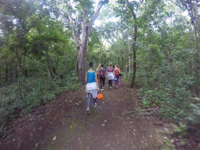 Volunteers walking through the forest in Costa Rica