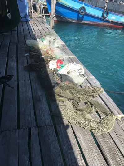 The rubbish collected during a Dive Against Debri dive