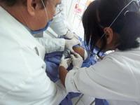 Watching surgery