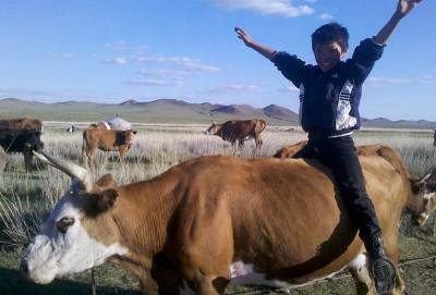 Boy with the cattle
