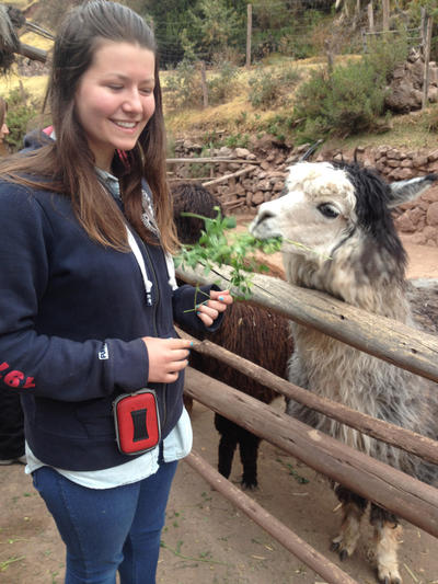 Faye feeding an Alpaca at Awana Kancha