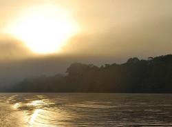 Rainforest Peru