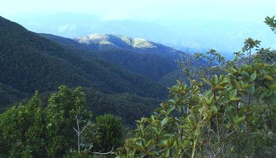 Sightseeing in Jamaica