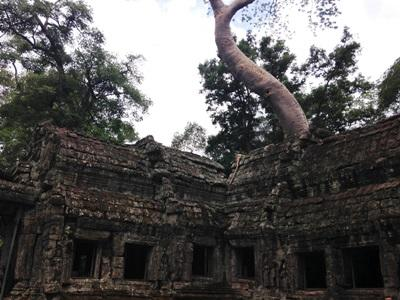 Sightseeing in Cambodia