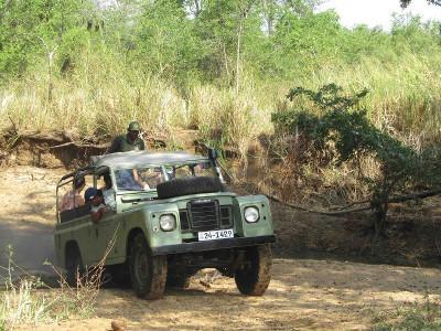 Getting stuck on safari