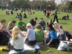 Volunteer picnic