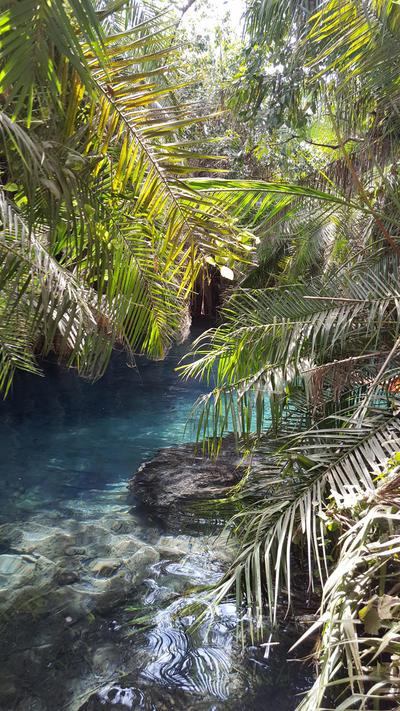 The hot springs in Tanzania