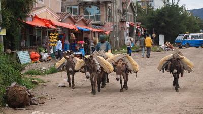 The streets of Ethiopia