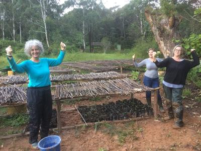 Volunteers help out at the tree nursery in a wildlife reserve