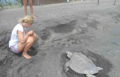 On the beach with a turtle