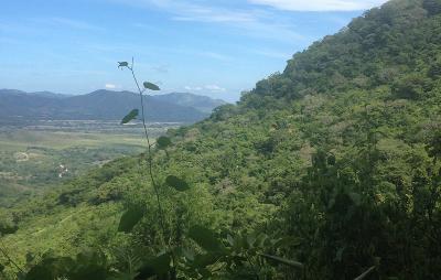 The view from Bara Honda National Park