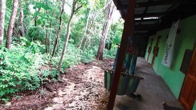 Accommodation at the Conservation Project in Costa Rica