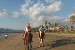 Horse riding Fiji