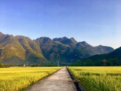 Scenery in Vietnam