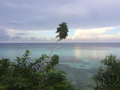 View in Ocho Rios