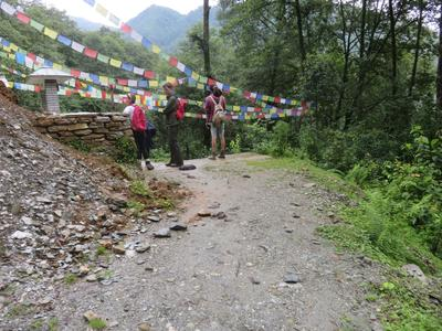 Volunteers walking beneath Tibetan prayer flags