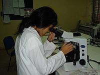 Me working in the lab