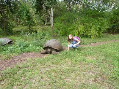 Olivia with a giant tortoise