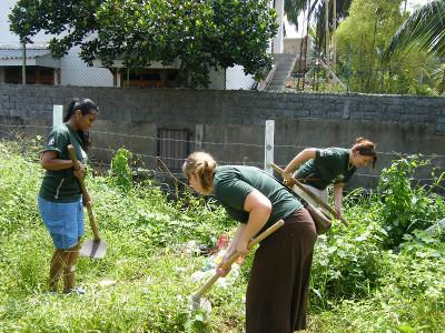 Clearing a garden with other volunteers