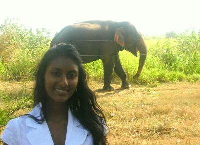 Getting close to an elephant