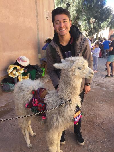 Robert standing with an alpaca