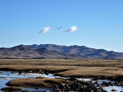The beautiful Mongolian landscape