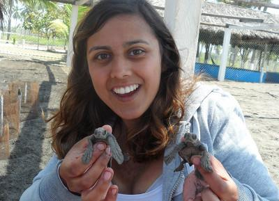 With baby turtles