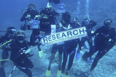 Shark Conservation Fiji