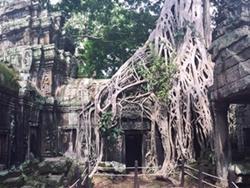 Templo antiguo de Camboya