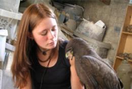 Médecine vétérinaire & soins animaliers