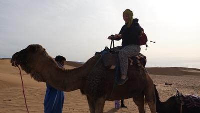 Une volontaire monte à chameau dans le désert au Maroc