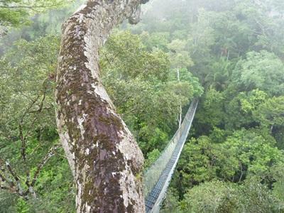 Ecovolontariat, Pérou, par Alexandra Bonnet