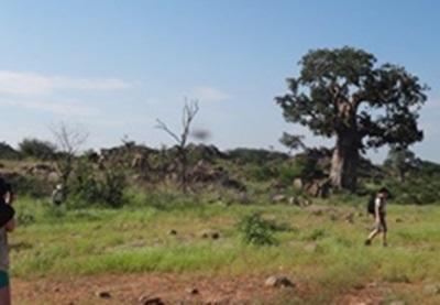Ecovolontariat et protection de la nature en Afrique du Sud