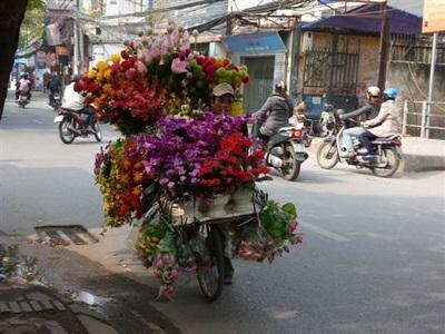 Scène de rue vietnamienne