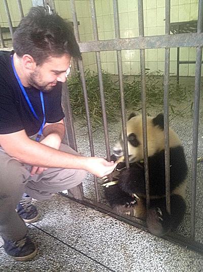 Dimitri en train de nourrir un bébé panda