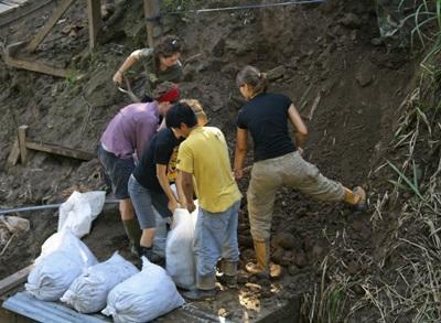 Volontaires dans la réserve