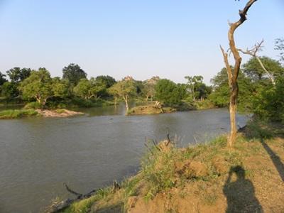Le Limpopo, frontière naturelle entre le Botswana et l'Afrique du Sud