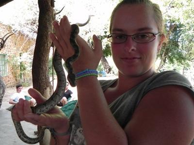 Un jeune Python et moi